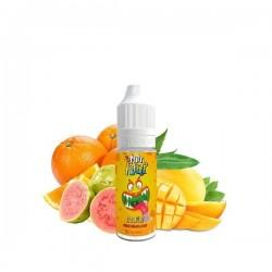 10x Salopiot Orange Mangue Goyave 10ML