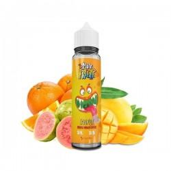 2x Salopiot Orange Mangue Goyave 50ML