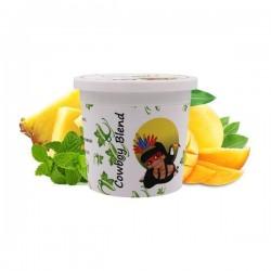 2 boîtes de Ice Frutz Goût CowBoy Blend (Ananas Mangue Menthe) 120g