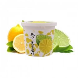 2 boîtes de Ice Frutz Goût Lemon Up (Citron Citron Vert) 120g