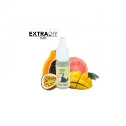 10x Concentré ExtraDIY Mister Exotic Fruits 10ML