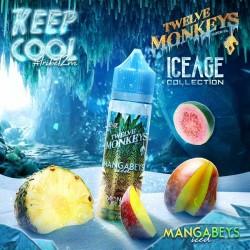 2x Twelve Monkeys ICE AGE MANGABEYS ICED 50ML