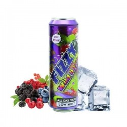 2x FIZZY JUICE Wild Berries 55ML
