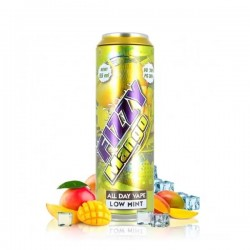 2x FIZZY JUICE Mango 55ML